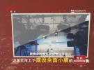 (圆梦小康 崛起江淮 高质量发展进行时)徐溜镇:朵朵菊花开出富民产业
