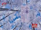 小寒时节:我市或将迎来今年首场降雪