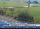 六旬老人在高速公路上来回穿梭 民警及时发现化解险情