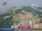 麦穗飘香 丰收在望 洪泽44万亩麦田色彩斑斓美如画