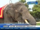 端午假期 一分11选5动物园共接待了游客近6000人次