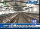 城事扫描:淮安区积极展开标准畜禽养殖场任务