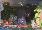 """国庆假期临近  花卉盆栽销售""""火爆"""""""