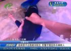 患病男子企图跳河轻生 民警手臂扭伤忍痛救人