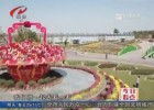 国庆假期  白马湖菊花展喜迎八方游客