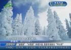 """""""温暖游""""""""冰雪游""""持续升温  旅游市场南北""""两头热"""""""