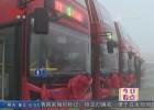十辆双层公交上路运营  城市流动风景再添靓丽色彩