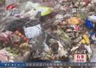 帮忙:生活垃圾堆田头  赵集镇表示立即处理