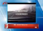 2月6日手机拍拍拍 告诉行车当心团雾