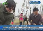 """志愿者共?#30149;?#24062;帼林"""" """"绿色生态靓万家""""活动走进白马湖景区"""