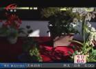 """我市參加世界園藝博覽會""""江蘇日""""活動"""