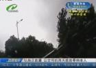 【践行社会主义核心价值观】弘扬正能量 公交司机雨天救助晕倒老人