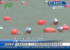 弘扬运河文化 十二市县游泳爱好者畅游淮安里运河