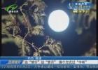 """【我们的节日】边""""旅行""""边""""赏月""""  换个方式过""""中秋"""""""