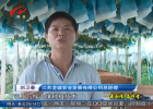 """【爱国情 奋斗者】IT工程师刘卫春的""""田园梦"""""""