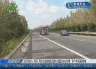 出行提示:明天 预计全省高速公路车流量达400万辆  两个时段最拥堵