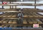 中秋临近  市场监管部门开展月饼生产企业专项大检查