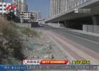 【巡访进行时】后续:京杭运河淮海路大桥北侧环境有改观