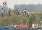 """""""秋高氣爽魚兒肥""""  鄉村釣魚好愜意"""