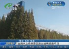金湖水上森林景区推出玻璃栈道项目