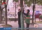 """4000棵香樟树穿上新款""""夹棉冲锋衣"""""""