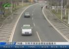 科普:行車不系安全帶安全隱患大