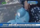 凡人善舉:男子騎電動車摔傷 熱心市民暖心守護
