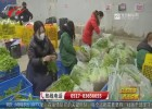 """【众志成城 抗击疫情】公益蔬菜直达行动启动  市民""""菜篮子""""有保障"""