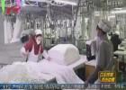 【众志成城 抗击疫情】7小时9980件医护床品 一分11选5企业连夜生产驰援雷神山医院