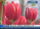 【文明游園】春回大地 萬物復蘇  淮安市民好心情