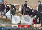 省洪泽湖渔管办举办第十届中国洪泽湖放鱼节