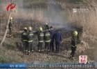 消防提醒:清明祭扫需文明 防范火灾于未燃