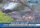 祭掃不當導致多起火情  消防部門提醒:請文明祭祀