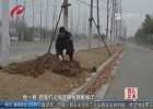 快速路电线电缆频繁被盗  公安组织专项攻坚行动