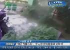 枫丹白露小区:有人非法种植罂粟被举报