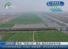 """【共建文明城市 共享美好生活】推进""""两违三乱""""整治 建设生态绿色河道"""
