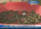"""关注菜篮子:中秋节过后  螃蟹黄满膏肥  价格""""亲民"""""""
