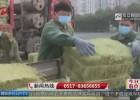淮安市动物园购入数吨饲料 小动物们过冬无忧