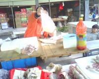 文友:小小老板是学生暑期改行卖菜