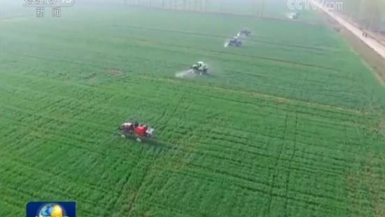 央视《新闻联播》聚焦淮安:1000多亩麦田实现全程机械化,大大拉动农民收入