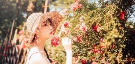 《花与夏》